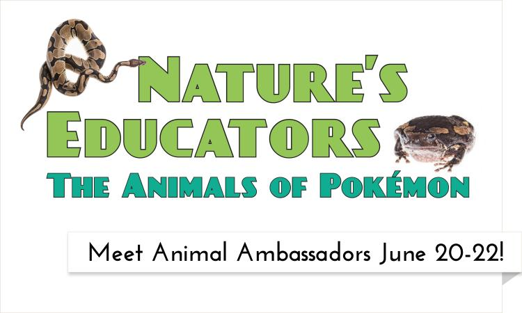 Come meet animal ambassadors at the Garfield County Libraries the week of June 20-22